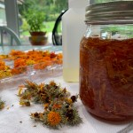 The Calendula Project