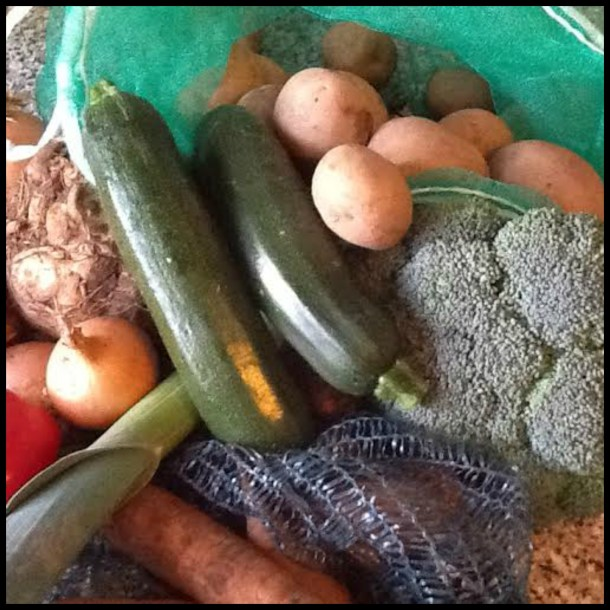 veg bag 2nd post