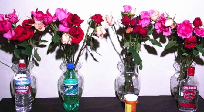 Scientific ways to make cut flowers last longer - Ways to make your flowers last longer ...