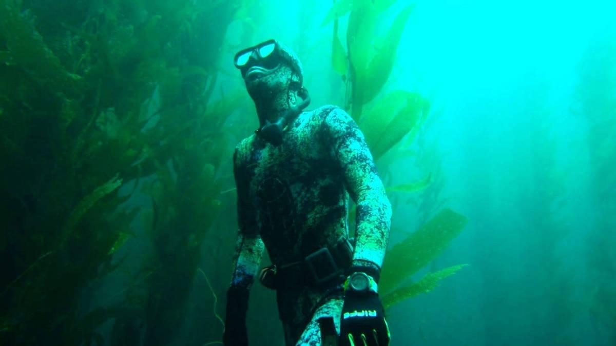 Speerfischen vor San Diego