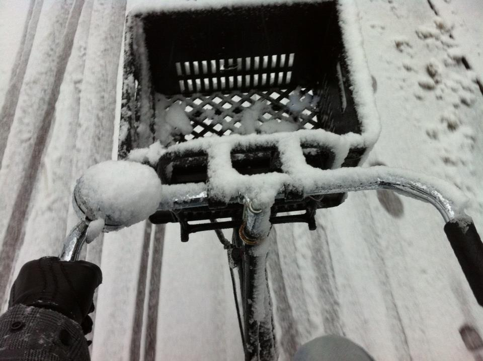 snow bike motion