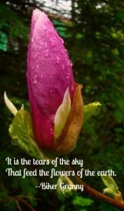 tears-of-the-sky