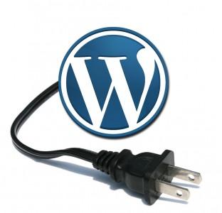 Los dominios en wordpress (1/2)