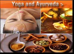 yoga and Ayurveda relation