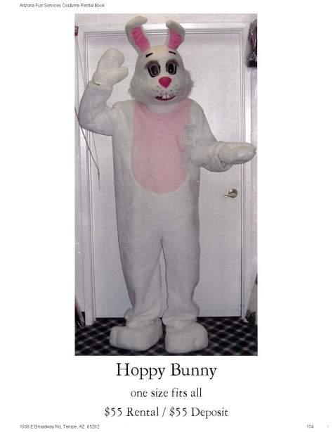 Hoppy Bunny 55