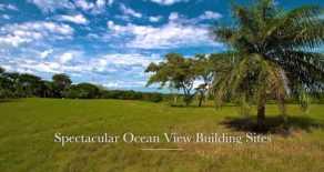 13 Ocean View Hectares Pedasi Videos
