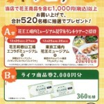 【終了】2017/11/20ライフ&花王 買って当てよう!花王フェア