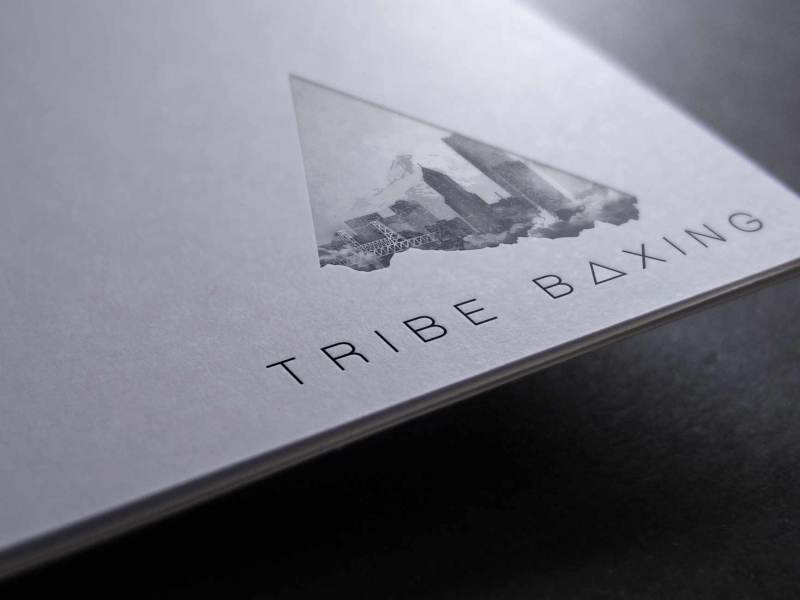 Tribe Boxing Logo and Branding