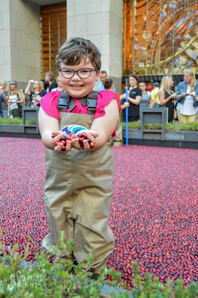 Crazy-Fun Cranberry Learning + An Orange Cranberry Muffins Recipe
