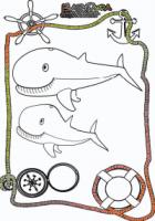Ausmalbild-Meer-Wal