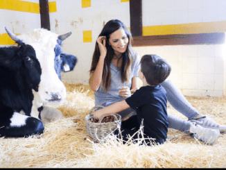 granja escuela El Alamo
