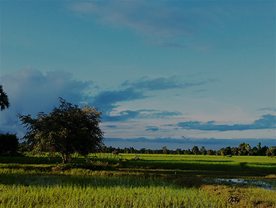 Experience the heart of rural Cambodia