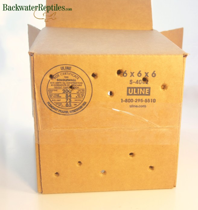 gift box with air holes