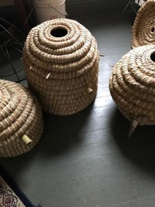 "All three skeps with long entrance tubes. The hive furthest on the right has a cow horn on which the ""beak"" is clipped for entry."