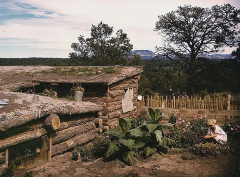 Garden adjacent to the dugout home of Jack Whinery, Pie Town New Mexico.