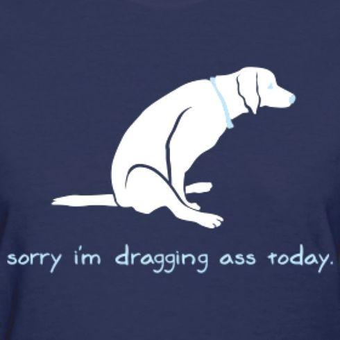 drag ass
