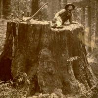 Why You'll Never See a Lumberjack Wearing a Fitbit