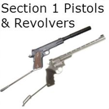 Section 1 Pistols