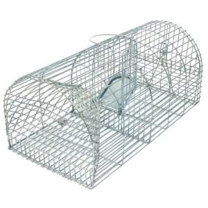 Humane-Rat-Trap