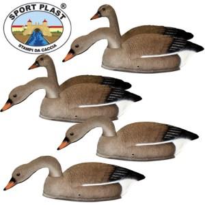 Grey Goose Decoys
