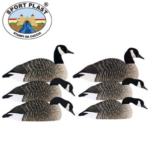 Sports Plas Canada Goose Decoys