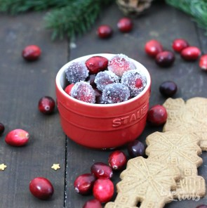 Speculoos Cheesecake with Cranberry Jelly | Bake to the roots