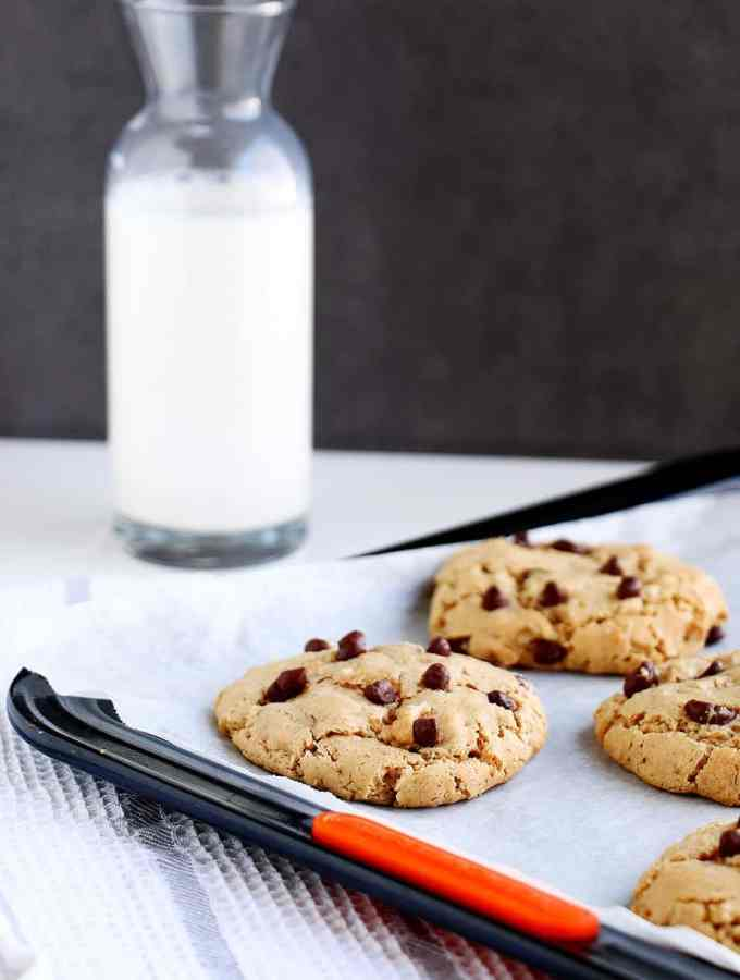 Peanut Butter & Choc Chip Oatmeal Cookies Delicious chewy cookies that are gluten free and packed with protein.