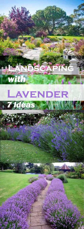 Medium Of Gardening Ideas For Backyard