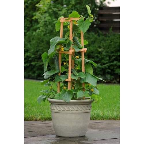 Medium Crop Of Vegetable Garden Troughs