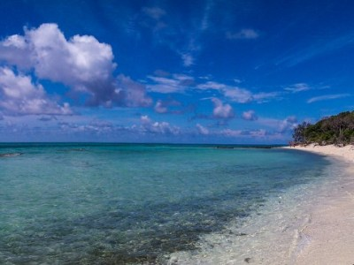 Lady Musgrave Island-2