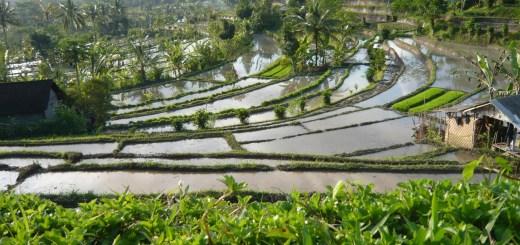 Sidemen, Karangasem, Bali
