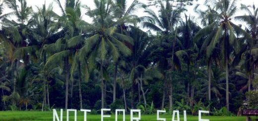 bali not for sale