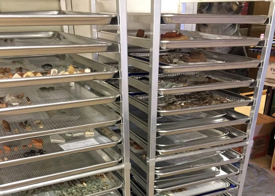 Trays from Herring Run Archaeology Labwork