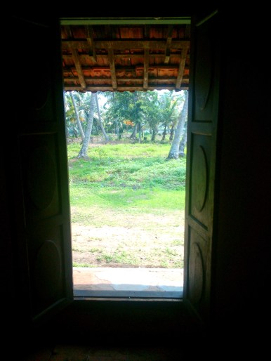 View from house onto land