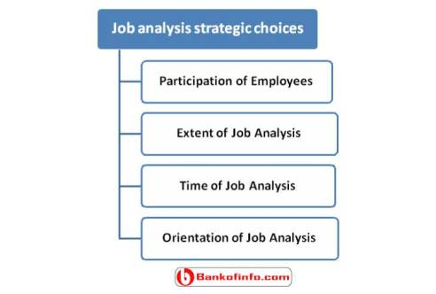 an analysis of the careers and colleges in work choices What are popular career options in behavioral science  degrees can also be found in these popular choices  career profiles colleges by state and field of .
