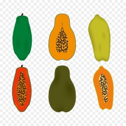 Sunshiny Euclidean Vector Papaya Vector Cut Papaya Euclidean Vector Papaya Vector Cut Papaya Png Download How To Cut A Papaya Tree How To Cut A Mexican Papaya