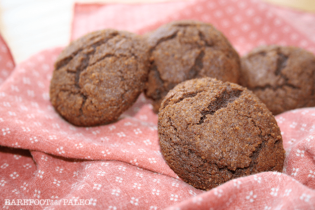 barefoot-and-paleo-paleo-molasses-cookies
