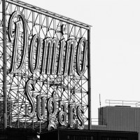 Domino Sign