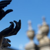 Seeking Hands