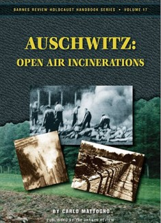 Auschwitz: Open Air Incinerations