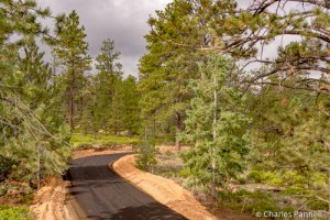 Bryce Canyon Shared Use Path
