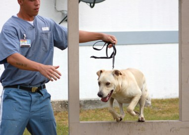 Cons Train Shelter Dogs, Both Get Better Lives