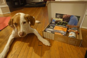 "Puppy Jack our ""foster fail"" with the Puppy Starter Kit from I and Love and You."
