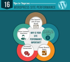 16 Tips to Speed Up Your WordPress Blog – Infographic