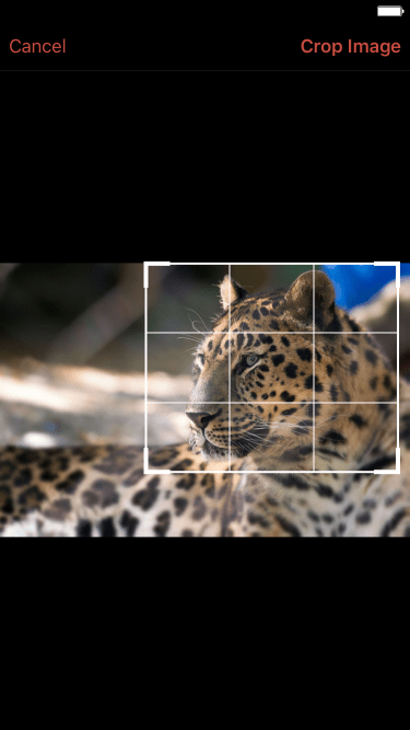 Built-in photo cropping function