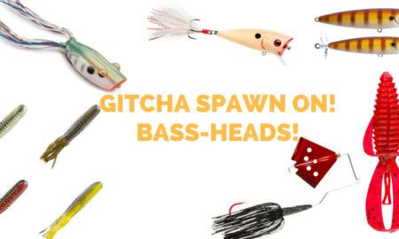 """bass fishing spawn baits"""
