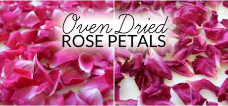 How To Dry Rose Petals For DIY Projects