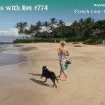 Beach Walk 774 – Releasing Resistance