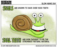 5--23-15-Snail-Teeth-Bearman-Cartoons