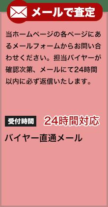 mail_satei